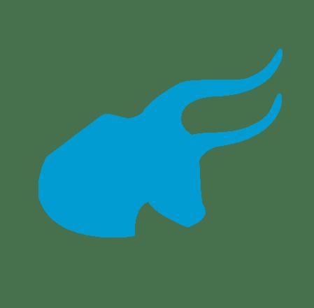Bull_TPE